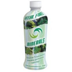 Vital Force Minerals - woda mineralna