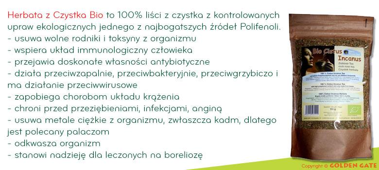 Czystek Herbata Bio polifenole na boleriozę