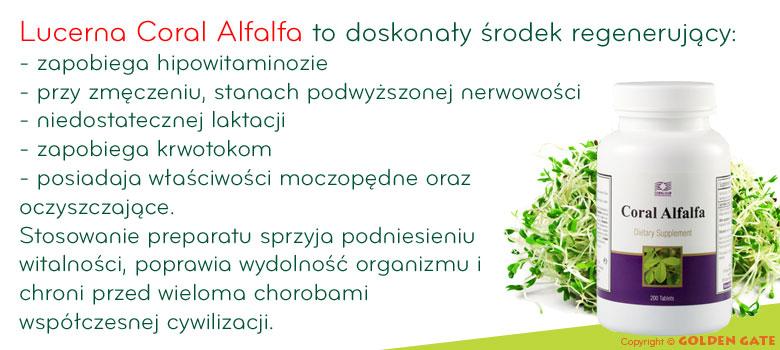 alfa alfa Lucerna Coral alfalfa