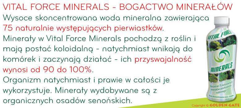 mineralna woda do picia lecznicza VITAL FORCE MINERALS