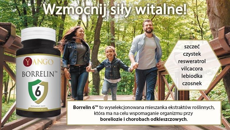 Borrelin 6 - Profesjonalne wsparcie organizmu przy boreliozie i chorobach odkleszczowych